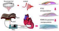 In Vivo Self-Powered Wireless Cardiac Monitoring via Implantable Triboelectric Nanogenerator