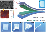 Biodegradable triboelectric nanogenerator as a life-time designed implantable power source